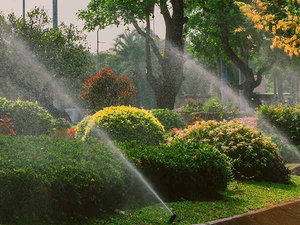 landscape maintenance and grounds maintenance